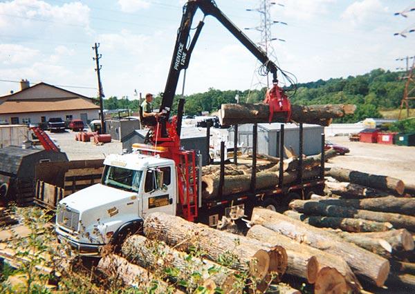 Shreiner Tree Care's log truck in 2000