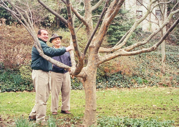 Steve Shreiner with a Dogwood Tree in 2001