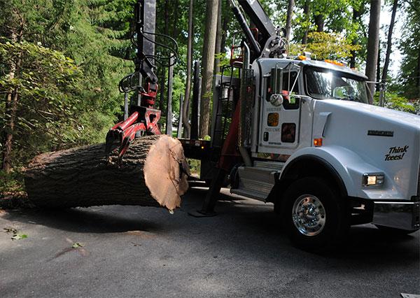 Shreiner Tree care's new log truck in 2012