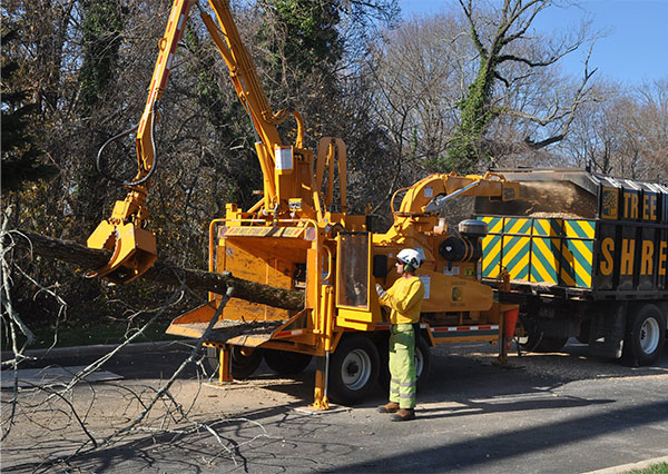 Shreiner Tree Care Certified arborist using whole tree chipper in 2015