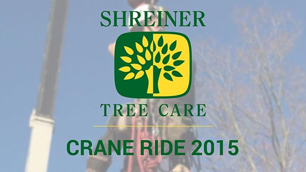 Shreiner Tree Care - Crane Ride 2015 Video