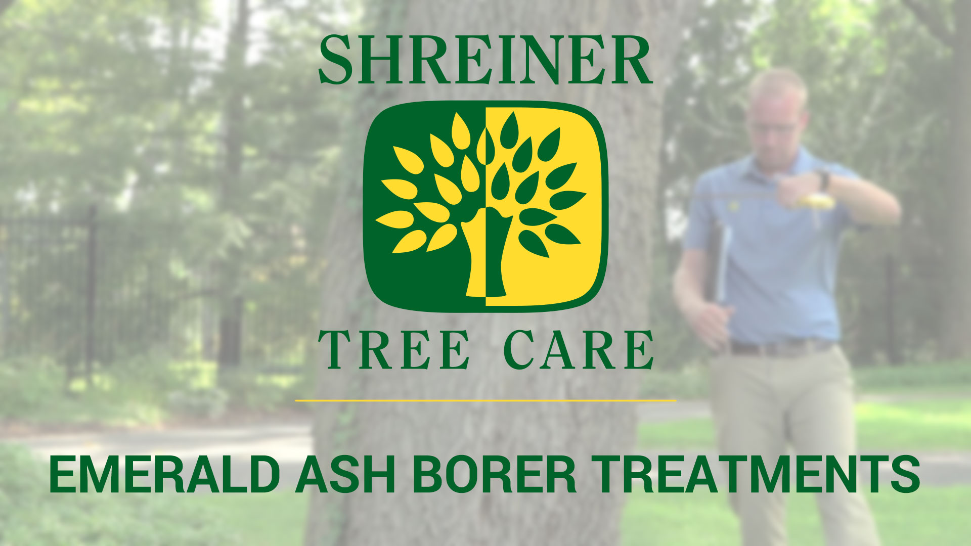 Shreiner Tree Care - Emerald Ash Borer Treatments Video